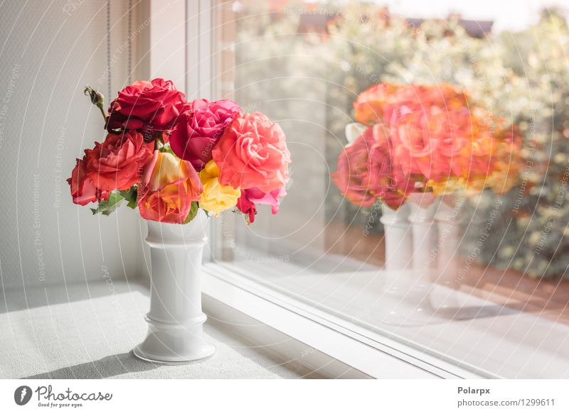 Bouquet of roses in a window Elegant Design Beautiful Summer House (Residential Structure) Decoration Table Feasts & Celebrations Valentine's Day Mother Adults