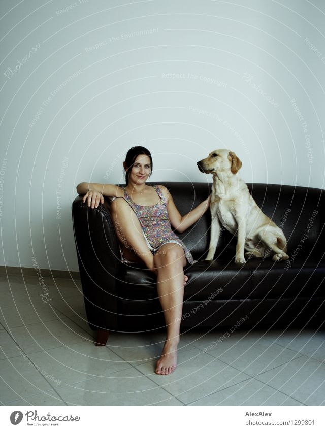 You and your dog Lifestyle Joy Playing Sofa Room Young woman Youth (Young adults) Legs Feet 18 - 30 years Adults Summer dress Barefoot Black-haired Dog Labrador