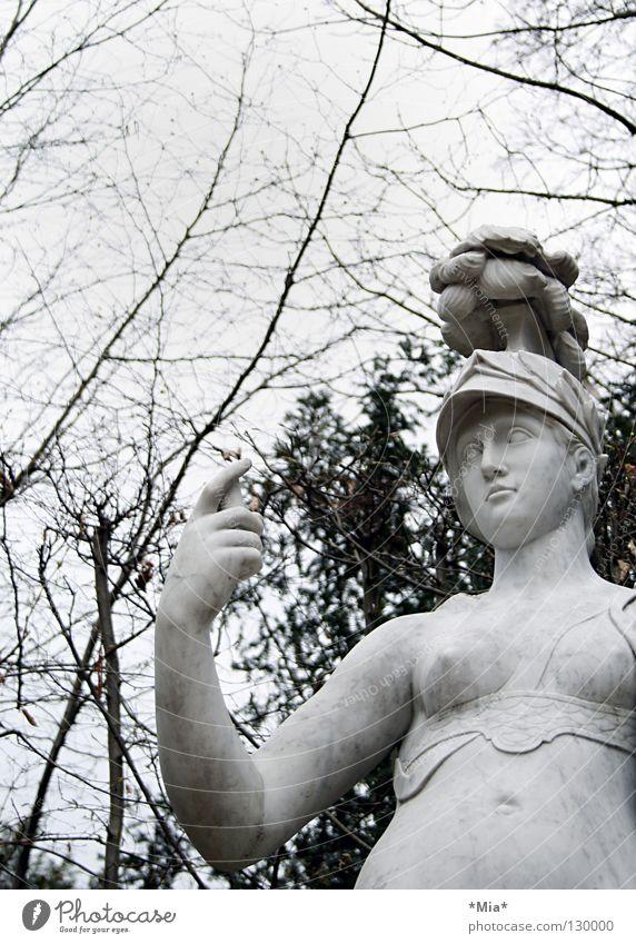 Woman Sky White Tree Black Dark Gray Bright Arm Bushes Branch Statue Twig Helmet Branchage Retentive