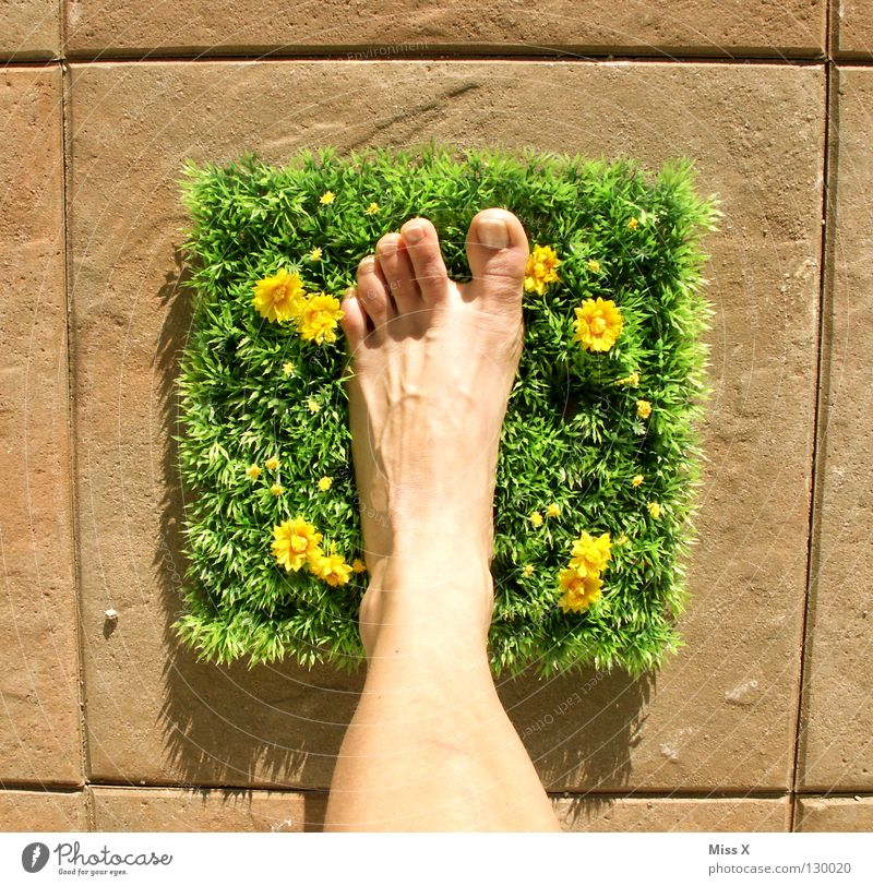 clodhoppers Colour photo Exterior shot Feet Flower Grass Walking Multicoloured Green Happy Happiness Contentment Joie de vivre (Vitality) Toes Square Lawn