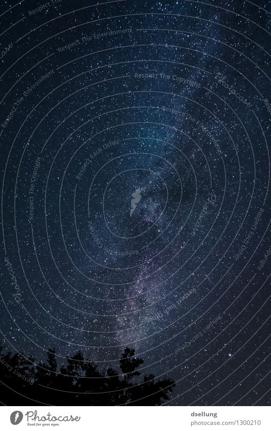 beam. Nature Landscape Sky Night sky Stars Summer Beautiful weather Exceptional Dark Fantastic Far-off places Gigantic Infinity Cold Above Wild Blue Black