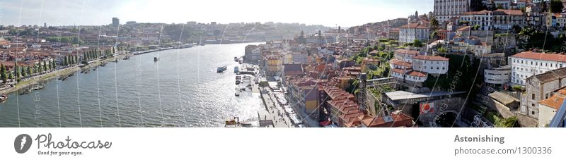 Porto V Environment Sky Horizon Summer Weather Beautiful weather Warmth Tree River Rio Douro Portugal Town Capital city Downtown Old town