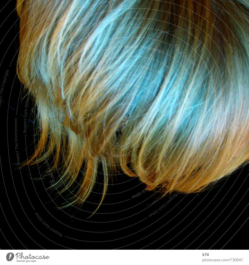 Human being Blue Green Black Head Hair and hairstyles Waves Blonde Glittering Point Curl Hairdresser Cut Strand of hair Comb Profession