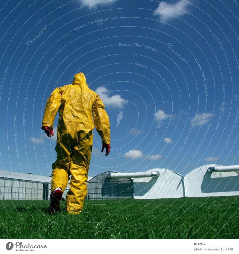 Sky Joy Yellow Meadow Grass Gray Art Walking Modern Mask Forwards Suit Paradise Carnival costume Futile Jug