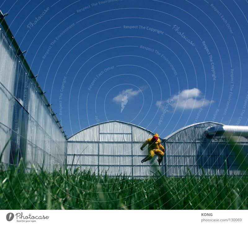 Sky Joy Yellow Meadow Jump Grass Gray Art Walking Flying Modern Mask Forwards Suit Upward Paradise