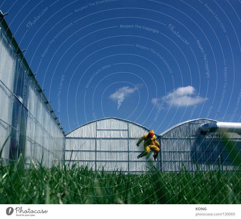 Sky Joy Yellow Meadow Jump Grass Gray Art Walking Flying Modern Mask Forwards Suit Upward Paradise