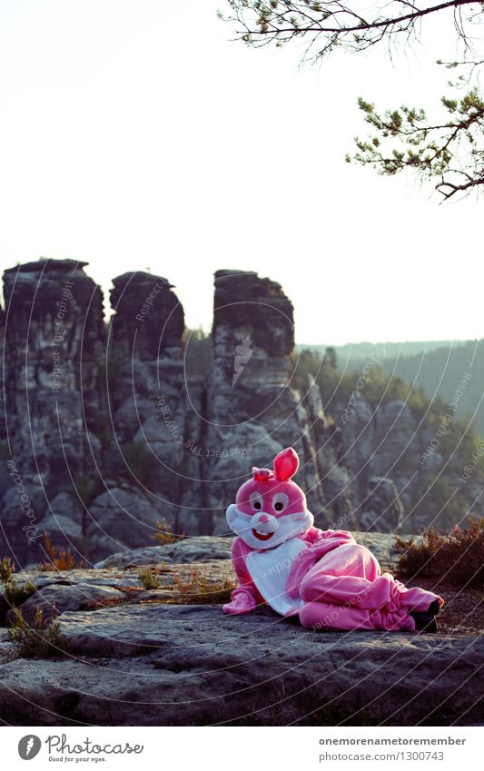Relaxation Joy Funny Art Rock Pink Lie Esthetic Posture Hare & Rabbit & Bunny Work of art Comical Funster Disguised Photo shoot Saxon Switzerland