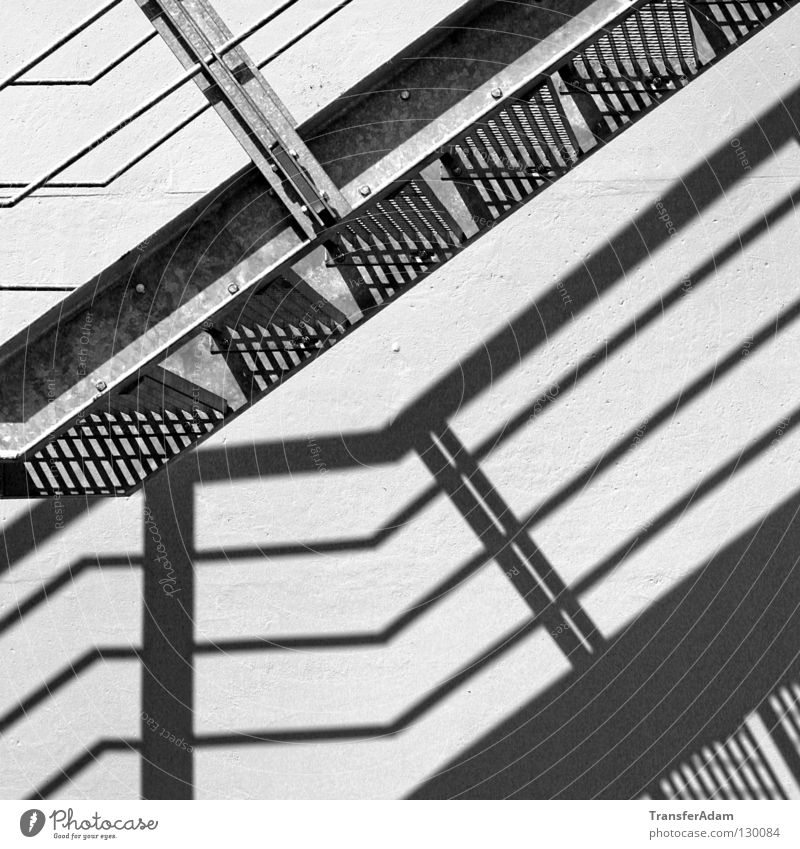 shadow plays Shadow play Square Architecture Stairs Black & white photo Upward black&white