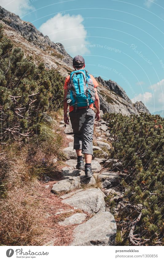 Boy hiking alone in the mountains Lifestyle Vacation & Travel Trip Adventure Freedom Summer Summer vacation Mountain Hiking Boy (child) Young man