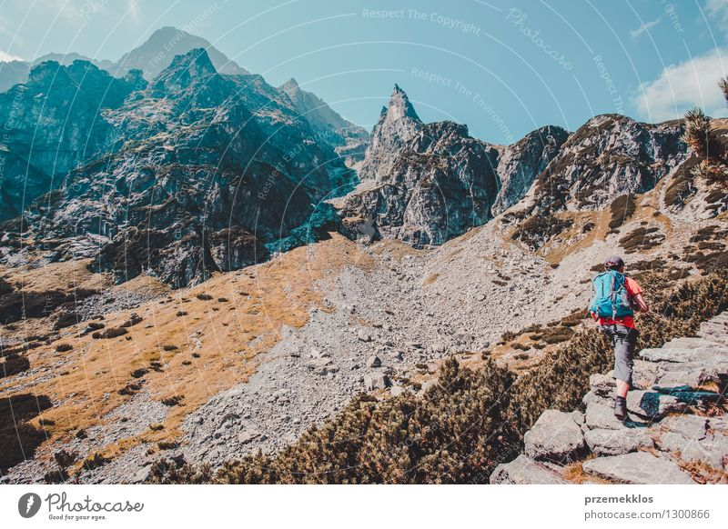 Hike in the Tatra Mountains Lifestyle Vacation & Travel Trip Adventure Freedom Summer Hiking Boy (child) 13 - 18 years Youth (Young adults) Nature Rock Joy