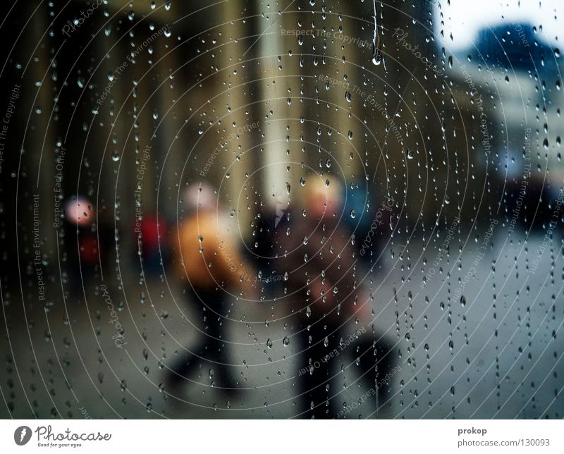 Human being Vacation & Travel City Cold Autumn Spring Berlin Healthy Going Rain Stand Crazy Walking Drops of water Trip Wet