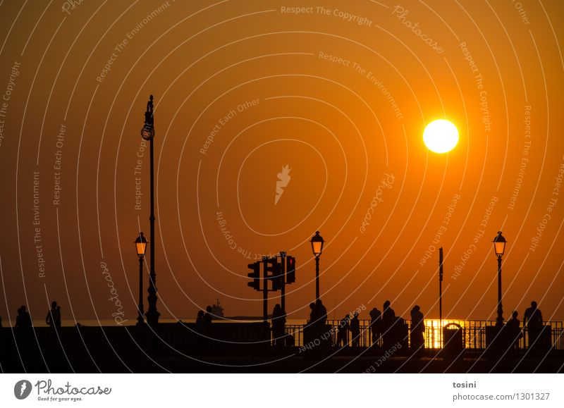 Human being Water Sun Group Gold Bridge Street lighting Dusk Bridge railing Traffic light Maritime