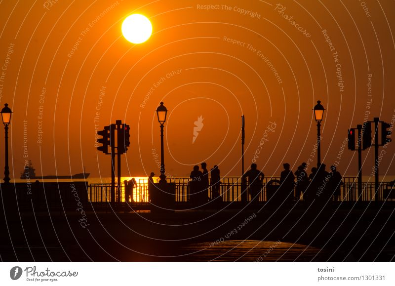 At dusk II Human being Group Water Sun Sunrise Sunset Sunlight Maritime Bridge Bridge railing Street lighting Dusk Traffic light Gold Colour photo