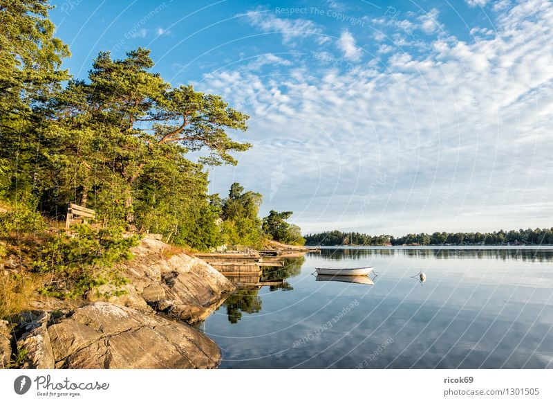 Archipelago on the Swedish coast Relaxation Vacation & Travel Tourism Island Nature Landscape Clouds Tree Forest Coast Baltic Sea Watercraft Blue Green Skerry