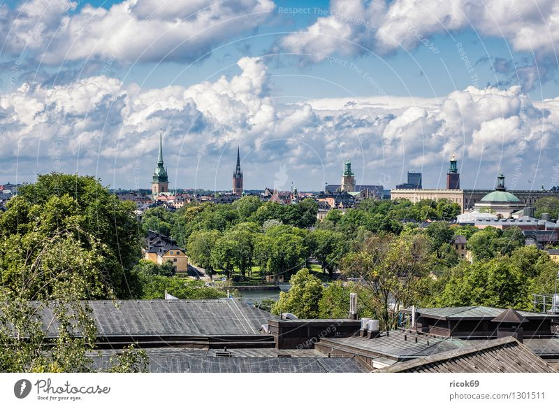 View of Stockholm Relaxation Vacation & Travel Tourism House (Residential Structure) Clouds Tree Coast Town Capital city Building Architecture