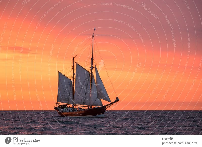 Vacation & Travel Water Relaxation Red Clouds Yellow Tourism Idyll Romance Baltic Sea Tradition Navigation Sailing Mecklenburg-Western Pomerania Maritime