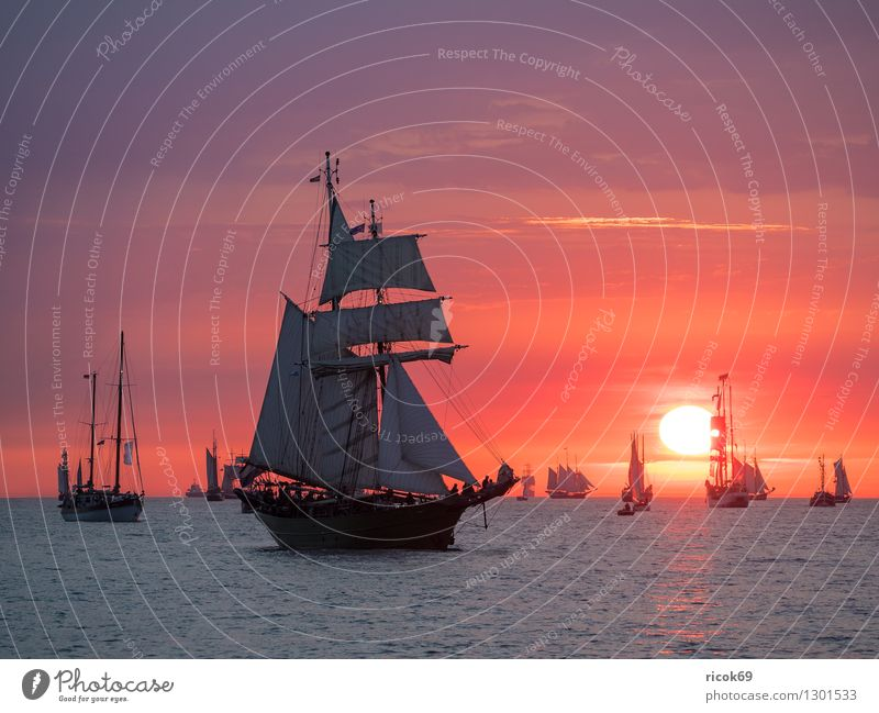 Sailing ships at the Hanse Sail Relaxation Vacation & Travel Tourism Water Clouds Baltic Sea Navigation Maritime Yellow Red Romance Idyll Tradition Windjammer