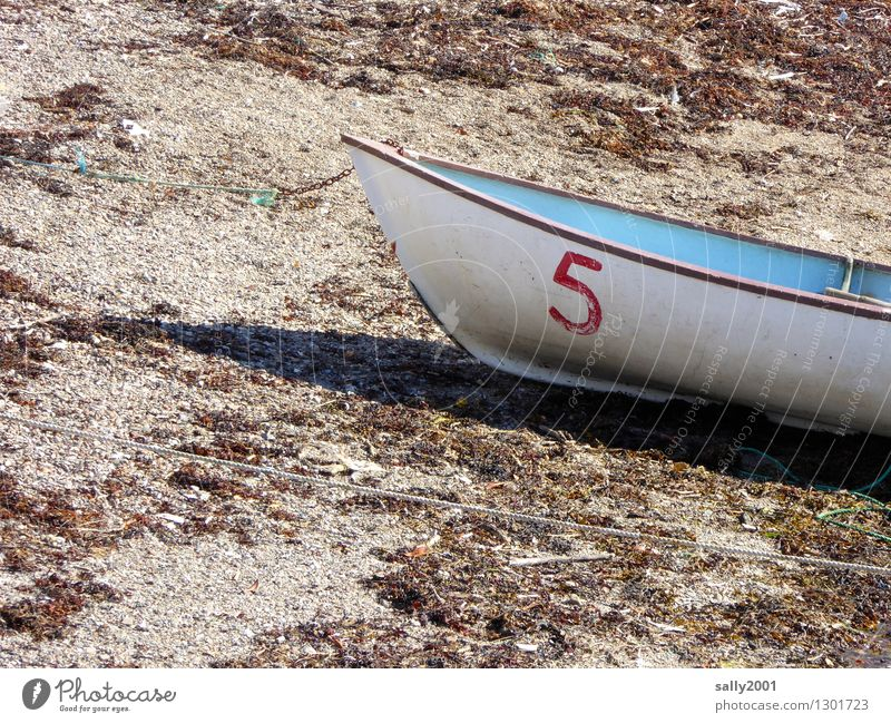 5 has a break... Beach Navigation Boating trip Rowboat Lie Old Simple Small Maritime Dry Blue White Adventure Loneliness Discover Relaxation Calm Stagnating