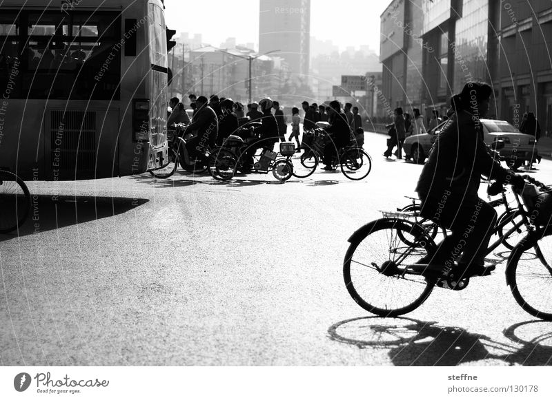 Woman Human being White Sun City Black Street Work and employment Air Bicycle Dirty Fog Environment Large High-rise Transport