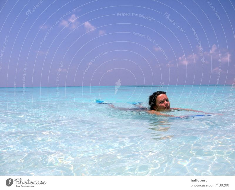 Water Ocean Dive Maldives Aquatics Reef Underwater photo Snorkeling