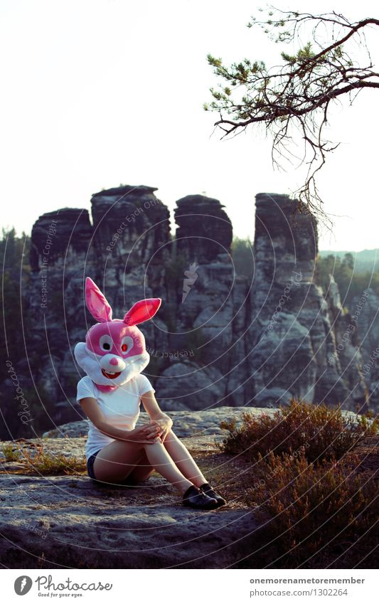 rock bunny Art Work of art Esthetic Hare & Rabbit & Bunny Hare hunting Eroticism Sweet Feminine Saxon Switzerland Rock Hare ears Nature Heather family Pink