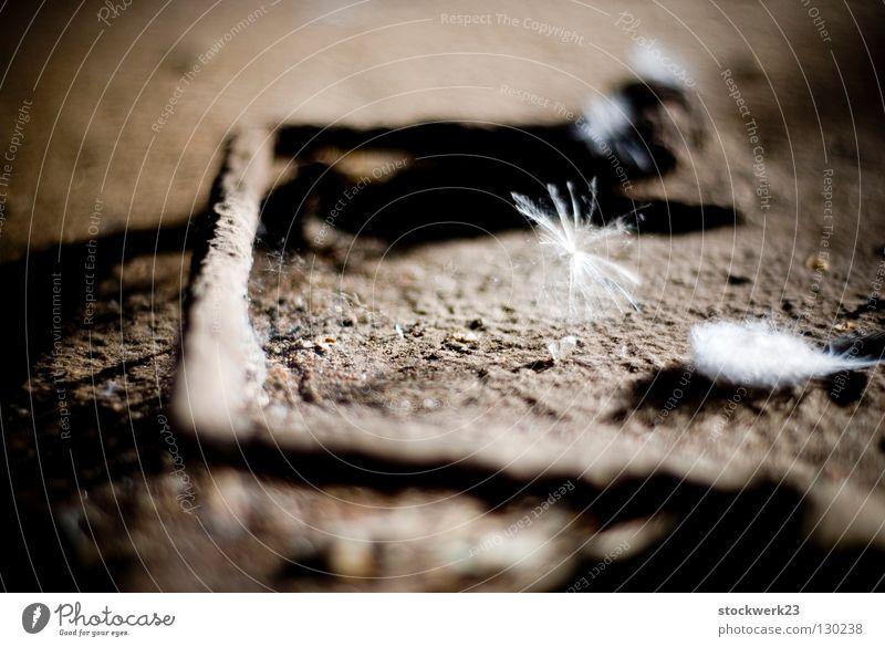 Metal Industry Feather Transience Derelict Decline Rust Door handle Flap Fluff Hinge