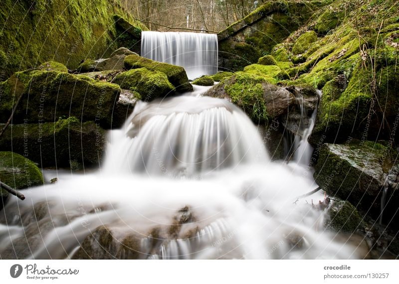 Nature Water Green Forest Dark Stone Fog Wet Rock River To fall Long exposure Brook Waterfall Flow