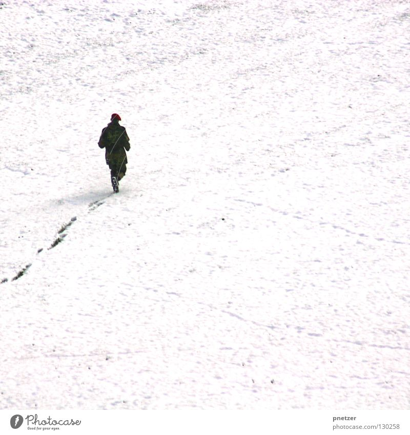 Cat Human being Man White Winter Far-off places Cold Snow Above Lanes & trails Ice Going Tall Running Tracks Frozen