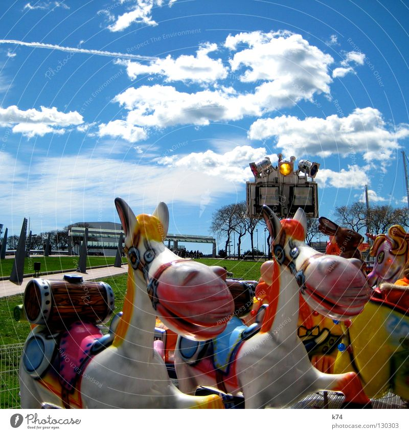 Joy Playing Laughter Lighting Park Infancy Horse Lawn Fairs & Carnivals Grinning Carousel Equestrian sports Keg