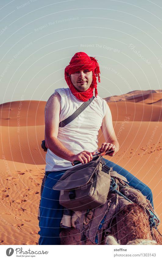 1500 unembellished views Desert Hideous Funny steffne Camel Dune Jubilee Colour photo Exterior shot Portrait photograph