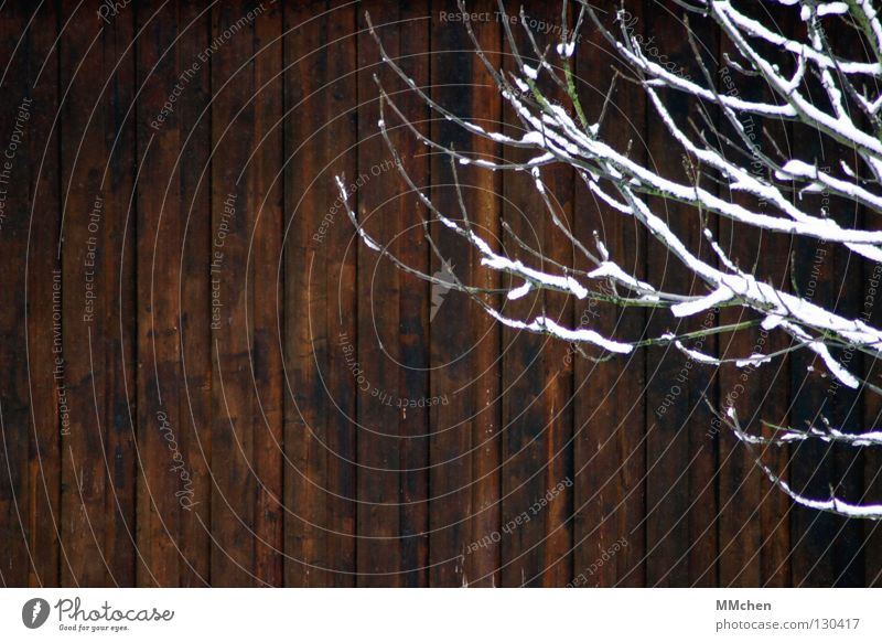 White Winter Snow Wood Brown Branch Hut Boredom Wooden board Twig Vertical Wooden wall Wooden house Wooden hut