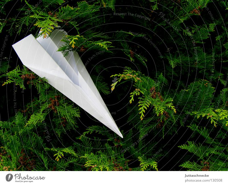 White Green Playing Airplane Paper Aviation Bushes Target Leisure and hobbies Infancy Wrinkles Airplane landing Throw Aim Hedge Strike