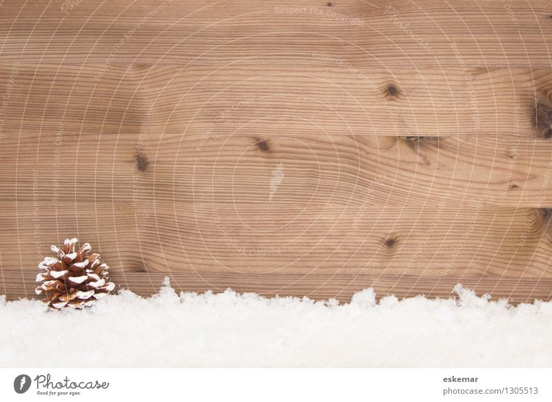 In the snow Snow Christmas background Card Winter Cone Wood Esthetic Simple Retro Brown White Joie de vivre (Vitality) Colour photo Subdued colour Deserted