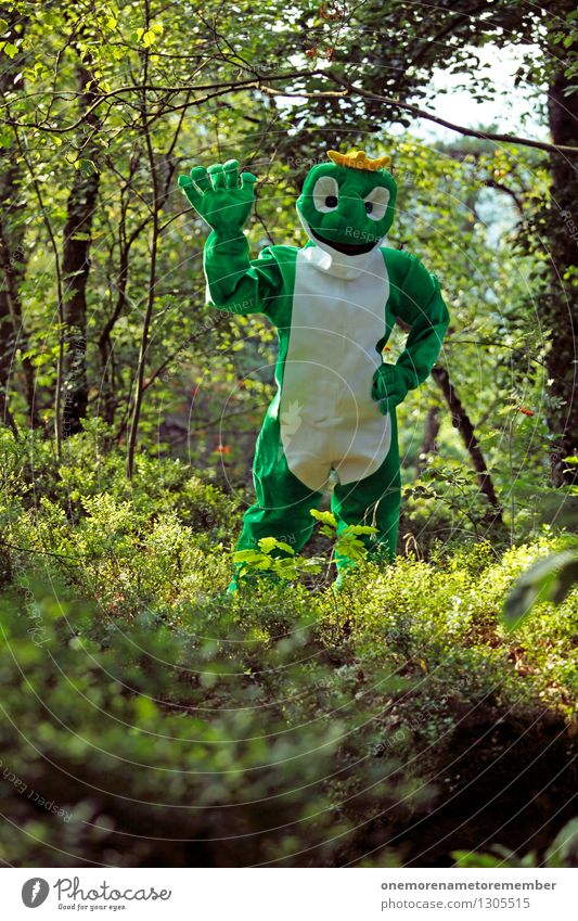hey Art Work of art Esthetic Frog Worm's-eye view Frog Prince Frog eyes Frog's legs Forest Green Camouflage Wave Salutation Hello Costume Carnival costume