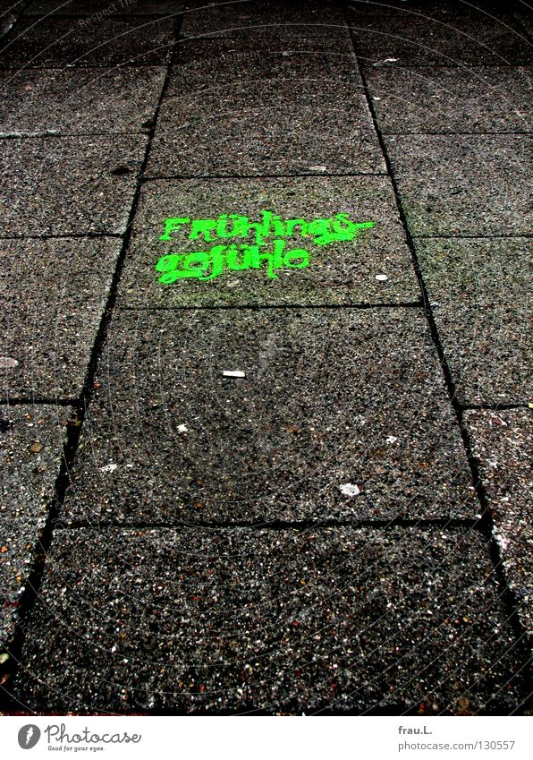 Green City Joy Lamp Emotions Spring Graffiti Concrete Characters Sidewalk Typography Paving stone Spray Spring fever Mural painting Stone slab