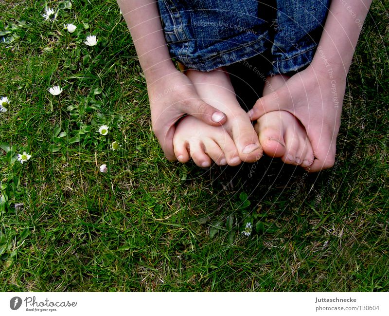 foot reflex zones Toes Barefoot Hand Fingers Crouch Grass Meadow Children's foot Footwear Dirty Daisy Flower Sheepish Foot reflexology massage Healthy