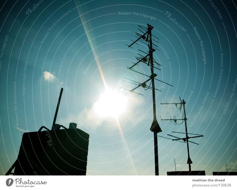sun worshippers Roof House (Residential Structure) Building Antenna Waves Frequency Branched Radio technology Radio waves Aspire Exhaust gas Air Heat Summer