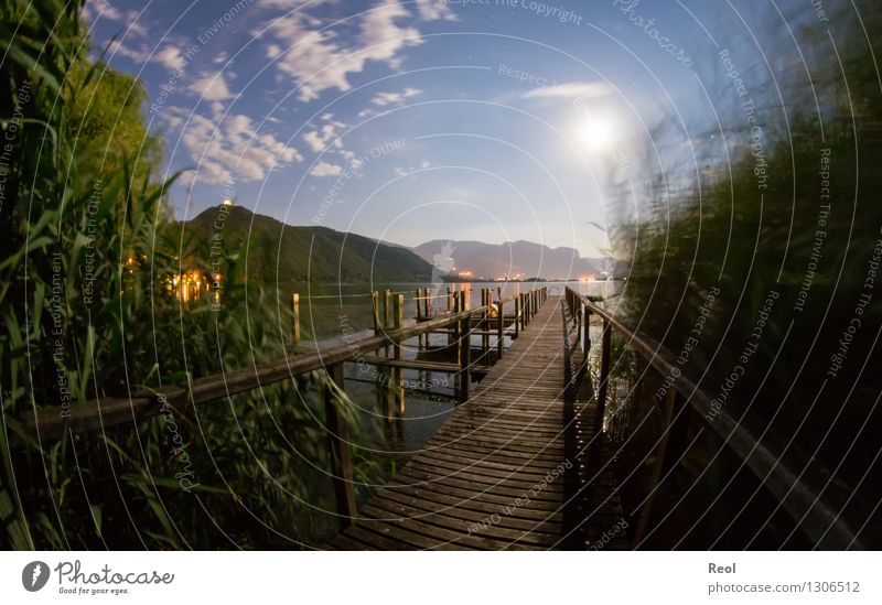 Nocturnal footbridge II Vacation & Travel Adventure Far-off places Nature Landscape Elements Water Night sky Full  moon Common Reed Hill Alps Mountain Lake