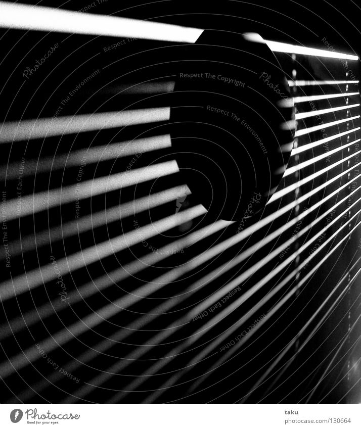 STRIPES III Light Stripe Room Wall (building) Lamp Wake up Black & white photo Sun Shadow living space Modern Morning ...