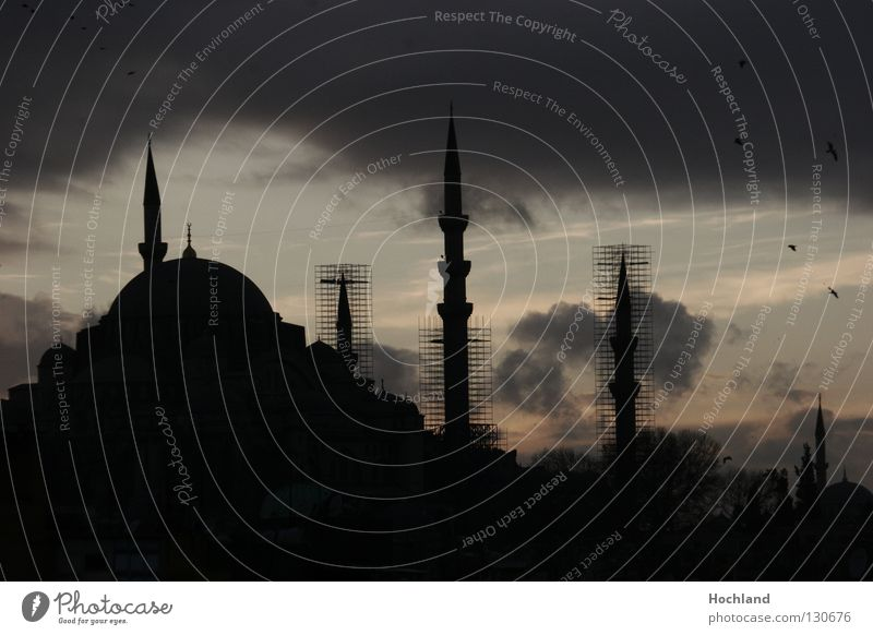 Mosque in the evening, Islam on the move Istanbul Minaret Domed roof Prayer Clouds Dusk Night Allah Turkey The Bosphorus Bazaar Golden Horn Bird Town Moslem