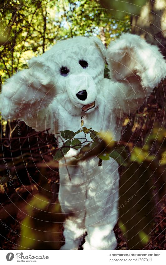 Nature Forest Art Wild Wild animal Esthetic Pelt Aggression Work of art Costume Bear Monster Aggressive Disguised Monstrous Menacing
