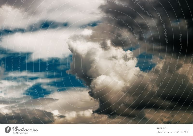 Clouds Sky Freedom Ease Easy Rain Rainwater Air Background picture Thunder and lightning Cumulus Wind Raincloud Structures and shapes Storm clouds Weather