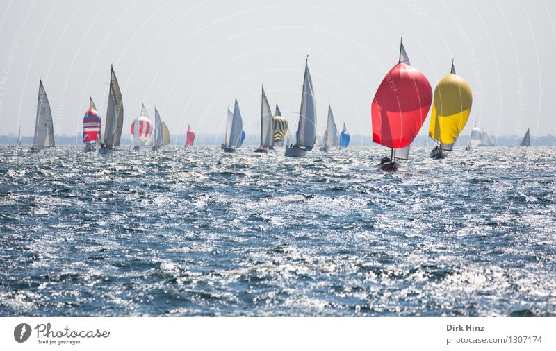Colourful competitors Sailing Yacht Free Maritime Blue Yellow Red Elegant Relaxation Experience Leisure and hobbies Joy Horizon Vacation & Travel Planning