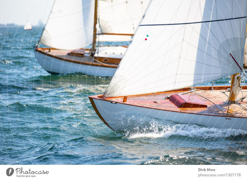 Maritime Race Sailing Yacht Esthetic Elegant Far-off places Infinity Blue Brown Movement Energy Relaxation Experience Vacation & Travel Freedom