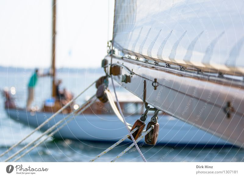 stretched Vacation & Travel Trip Far-off places Summer Summer vacation Ocean Sailing Yacht Old Long Maritime Brown Relaxation Freedom Leisure and hobbies Joy