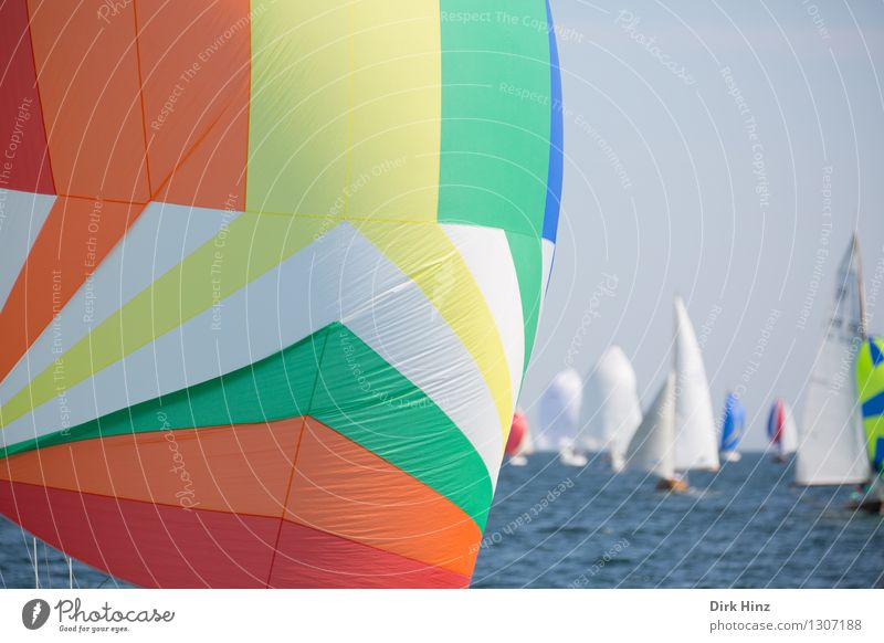 Colorful Spinnaker Sailing Yacht Happiness Fresh Large Infinity Maritime Blue Green Orange Freedom Leisure and hobbies Hope Horizon Optimism Tourism