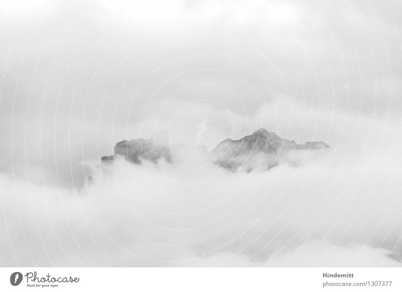 In clouds Environment Nature Landscape Elements Earth Air Water Sky Clouds Summer Climate Bad weather Fog Rock Alps Mountain Dolomites Exceptional Threat Tall