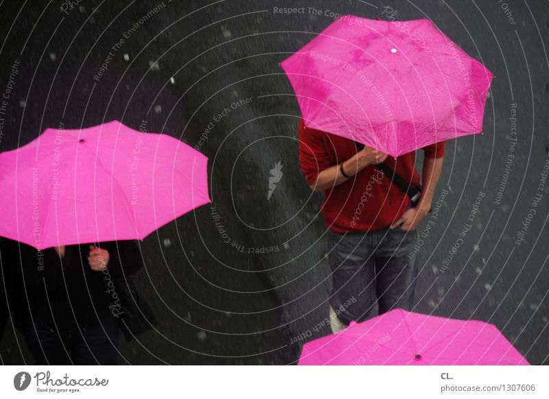 Human being Adults Street Life Autumn Going Pink Rain Weather Transport Climate Wet Umbrella Traffic infrastructure Climate change Pedestrian