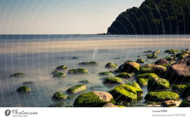 nature Environment Nature Landscape Plant Sand Water Sky Cloudless sky Summer Climate Beautiful weather Fog Moss Algae Stone Rock Waves Coast Beach Baltic Sea