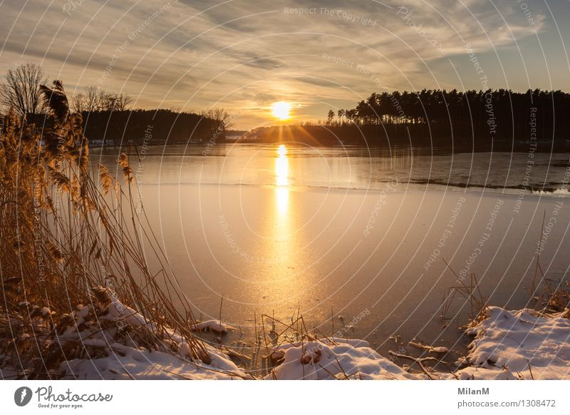 Winter sun at the lake Well-being Contentment Relaxation Calm Far-off places Freedom Sun Snow Winter vacation Nature Landscape Water Sky Clouds Horizon Sunrise